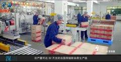中山日丽化妆品自动化包